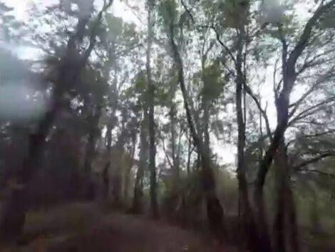 Florida-mountain-biking-Long-version